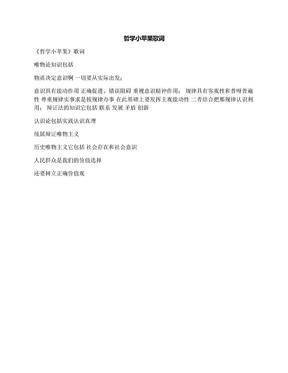哲学小苹果歌词.docx