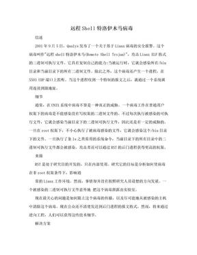 远程Shell特洛伊木马病毒.doc