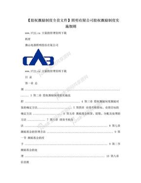 【股权激励制度全套文件】照明有限公司股权激励制度实施细则.doc