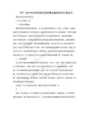 年产1000吨高性能烧结钕铁硼永磁材料项目建议书.doc