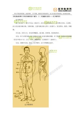 中医执业医师考点:十二经脉循行部位——足少阴肾经.doc