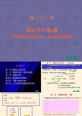 有机化学课件河南师范 (21).ppt