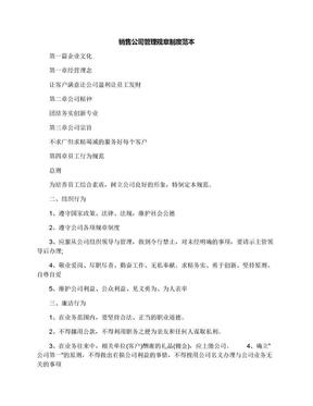 销售公司管理规章制度范本.docx