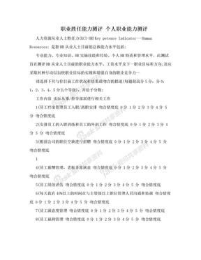 职业胜任能力测评 个人职业能力测评.doc