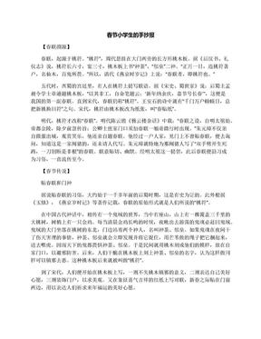 春节小学生的手抄报.docx