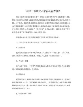 综采二队职工小家自检自查报告.doc