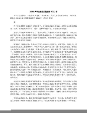 2016大学生暑期实践报告3000字.docx