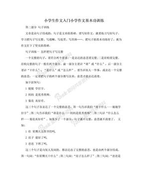 小学生作文入门小学作文基本功训练.doc