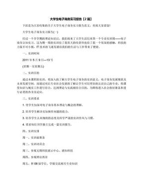 大学生电子商务实习报告【2篇】.docx