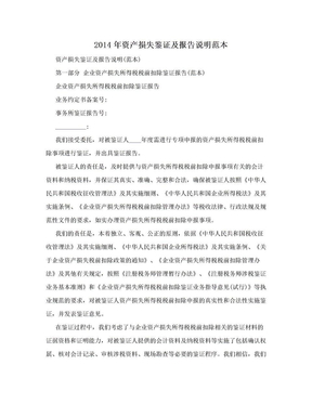2014年资产损失鉴证及报告说明范本.doc