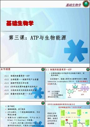 ATP与生物能源.ppt