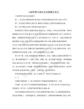 工商管理专业社会实践报告范文.doc