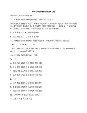 小升初语文词语专项训练习题.docx
