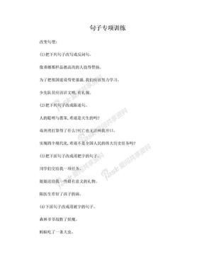 小学语文总复习_句子专项训练(答案).doc