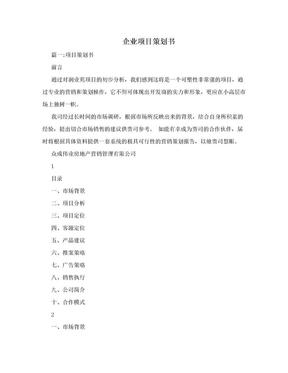企业项目策划书.doc