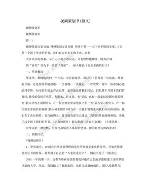 视频策划书(范文).doc