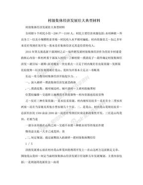 村级集体经济发展壮大典型材料 .doc