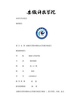 合肥市琥珀山庄调研报告.doc