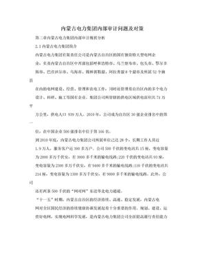 内蒙古电力集团内部审计问题及对策.doc