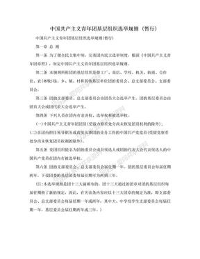 中国共产主义青年团基层组织选举规则 (暂行).doc