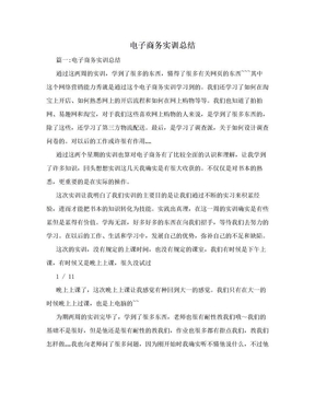 电子商务实训总结.doc