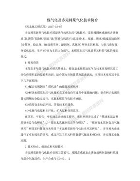 煤气化及多元料浆气化技术简介.doc