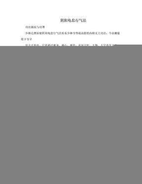 阴阳龟息行气法.doc