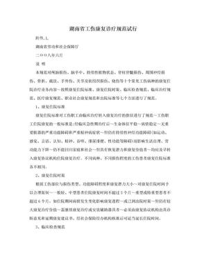 湖南省工伤康复诊疗规范试行.doc