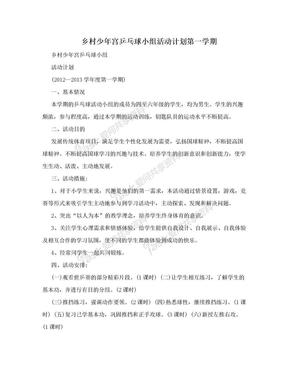 乡村少年宫乒乓球小组活动计划第一学期.doc