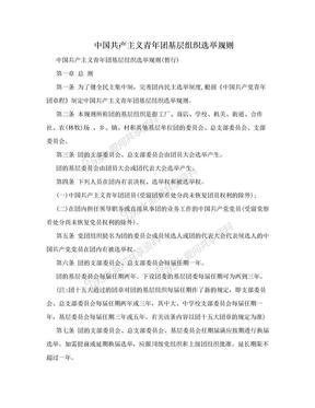 中国共产主义青年团基层组织选举规则.doc