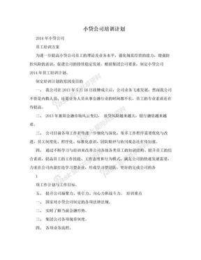 小贷公司培训计划.doc