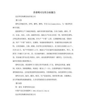 养番鸭可行性分析报告.doc