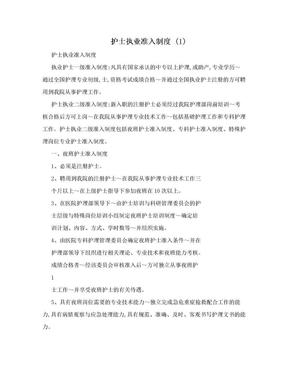 护士执业准入制度 (1).doc