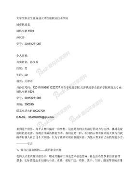 大学生职业生涯规划书.docx
