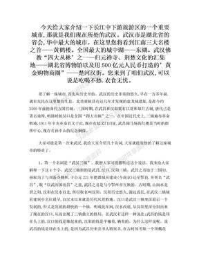 新武汉市情-.doc
