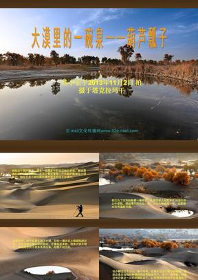 大漠里的一碗泉——葫芦瓢子.ppt