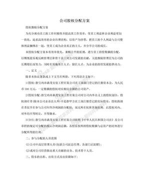公司股权分配方案.doc