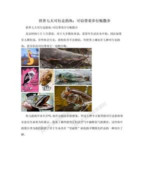 世界七大可行走的鱼:可以带着步行鲇散步.doc