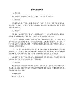 乡镇元旦活动方案.docx