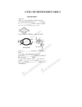 七年级下册生物识图实验探究专题练习.doc