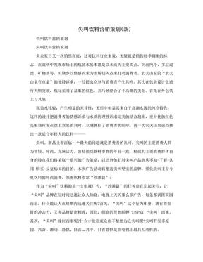 尖叫饮料营销策划(新).doc