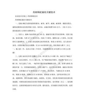 药材枸杞栽培关键技术.doc