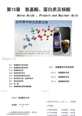 15 氨基酸 蛋白质 核酸.ppt