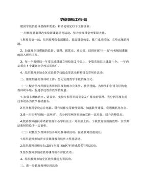 学校科研处工作计划.docx