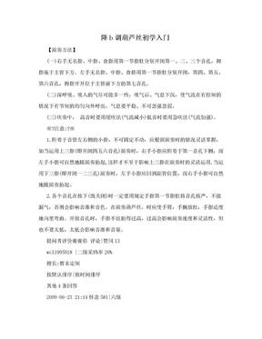降b调葫芦丝初学入门.doc