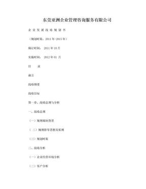 2012公司发展战略规划书(详细).doc