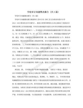 学校审计问题整改报告 (共3篇).doc
