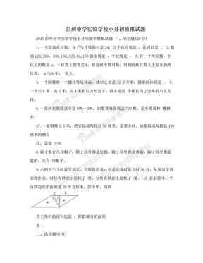 彭州中学实验学校小升初模拟试题.doc