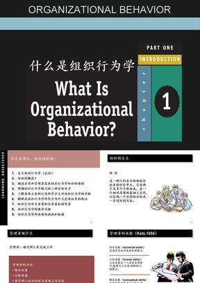 第1章,什么是组织行为学.ppt