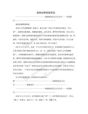 建材品牌联盟策划.doc